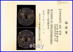Antique Japanese Hizen School Dragon Tsuba with NBTHK Hozon Tosogu
